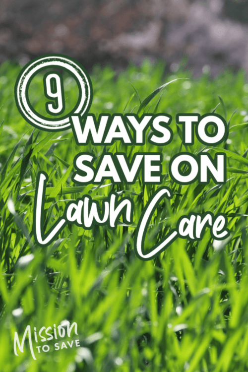 grass with text ways to save on lawn care