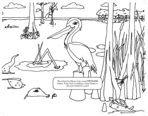 Hurricane Season Has Started. This Coloring Book Can Help