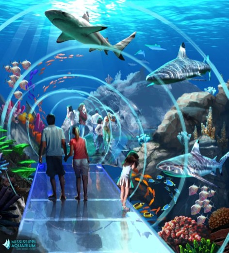 Rendering of a tunnel tank at the Mississippi Aquarium
