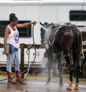 Tiffany Pitts, of Tyler, Texas, washes her horse after her husband raced during the harness racing competition at the Neshoba County Fair in Philadelphia, Miss. Tuesday, July 31, 2018.