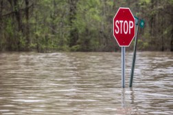 Road signs surrounded by water in Issaquena County Friday, April 5, 2019.