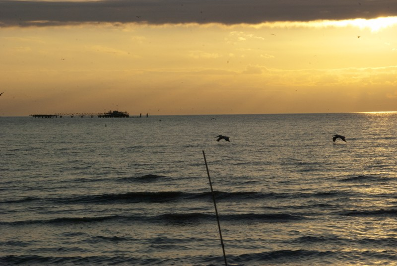 Gulf of Mexico at Southeast Pass