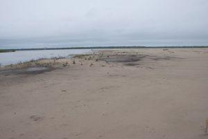 Choctaw Island; lower Mississippi River mile 564-ish