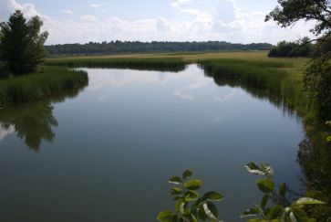Mississippi River east of Bemidji