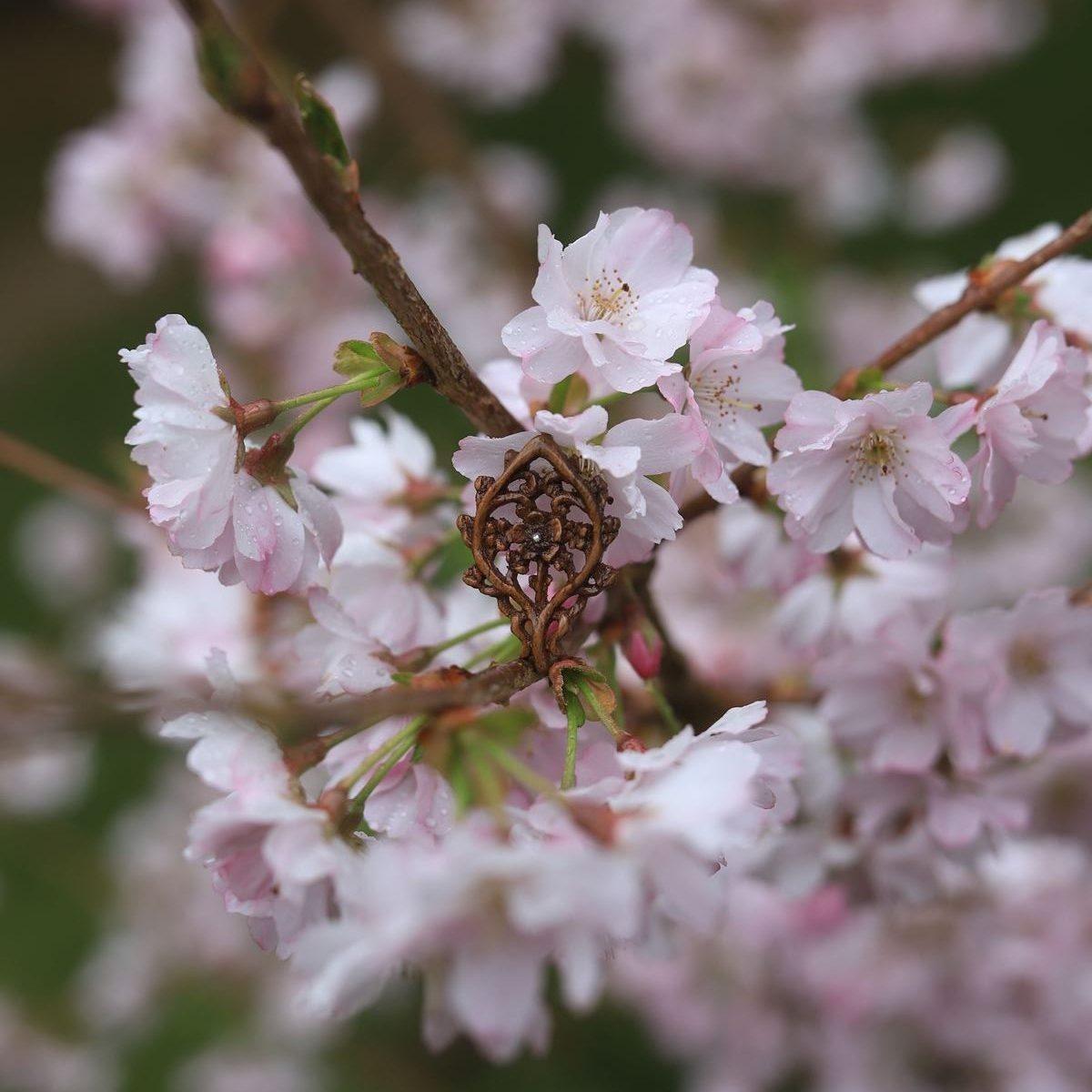 Cerisier, fleur, japon, sculpture, collier, bijoux, bois, artisanat, français, atelier de la lettre aux ours