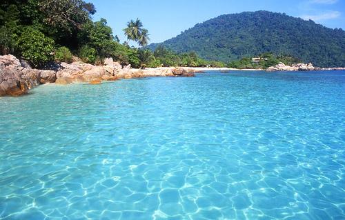 a tropical paradise..