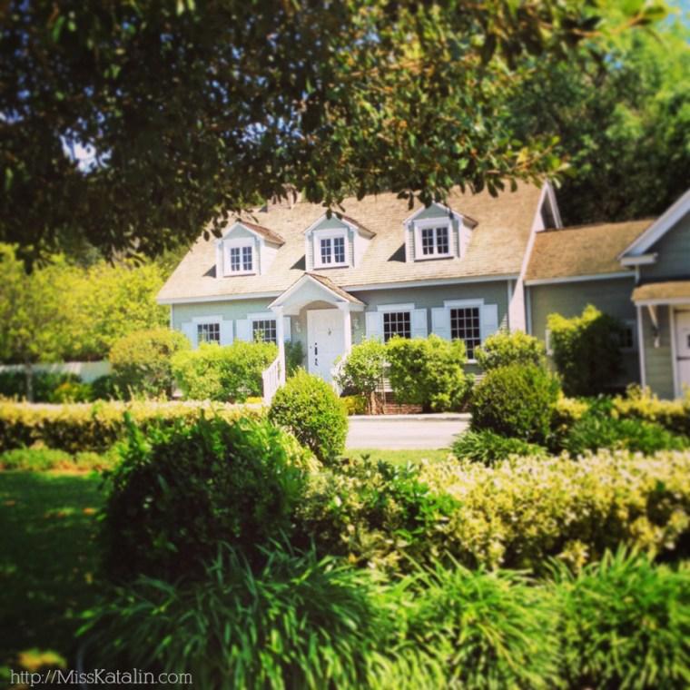 Katalin_house