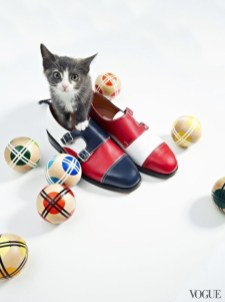 The cat and the flat editorial by Charlie Engman for Vogue