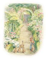 Beatrix Potter Botanical Drawings
