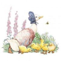 Duck Beatrix potter