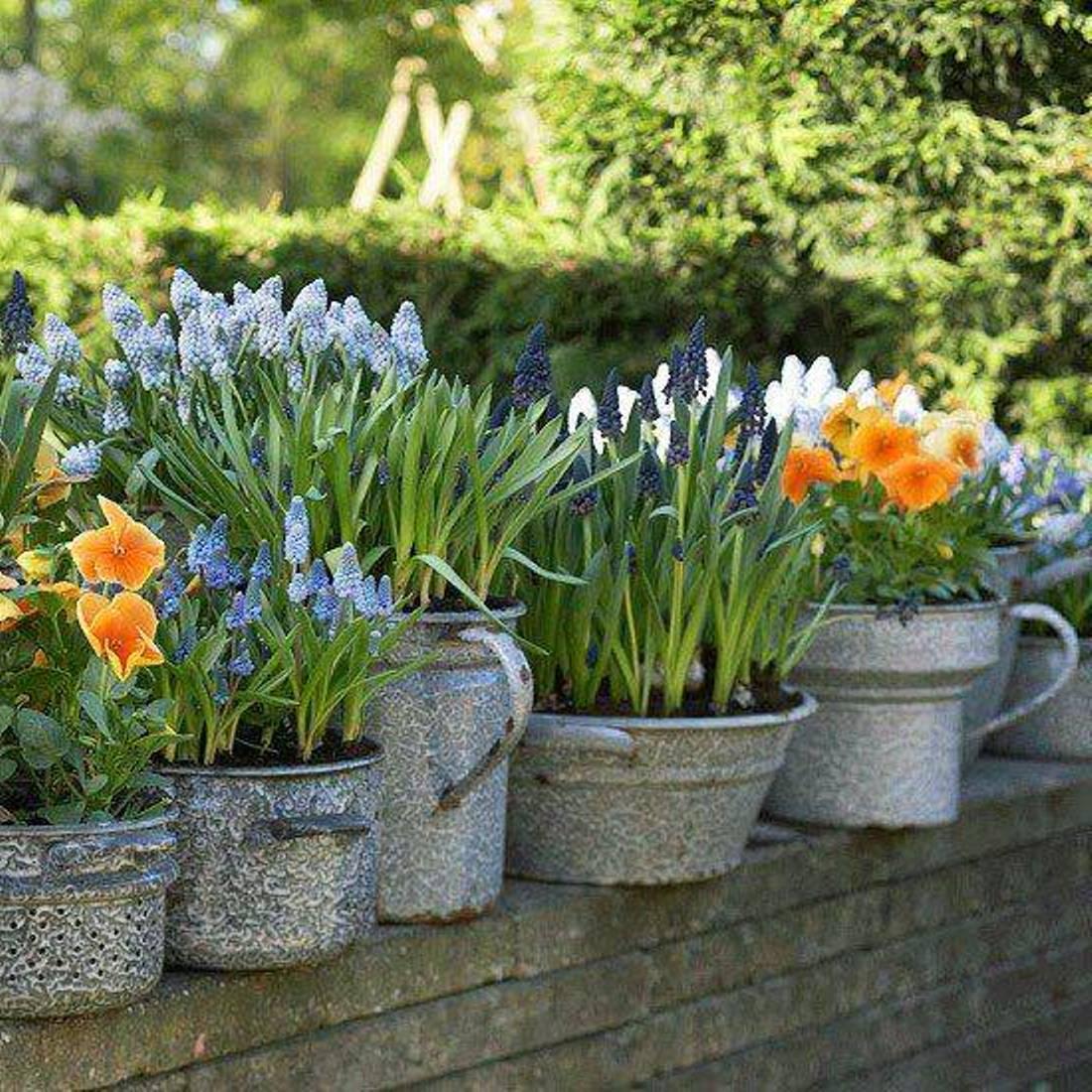Small Flower Bed Ideas Saveemail Joanne Winn Garden Design 17