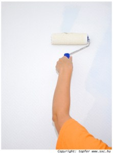 arm painting a wall