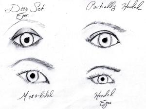 eyes, eye shape, drawings of eyes