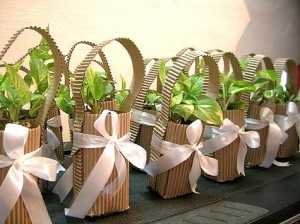 Eco-friendly Thank You Gifts