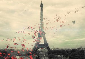 rose petals by the eiffel tower