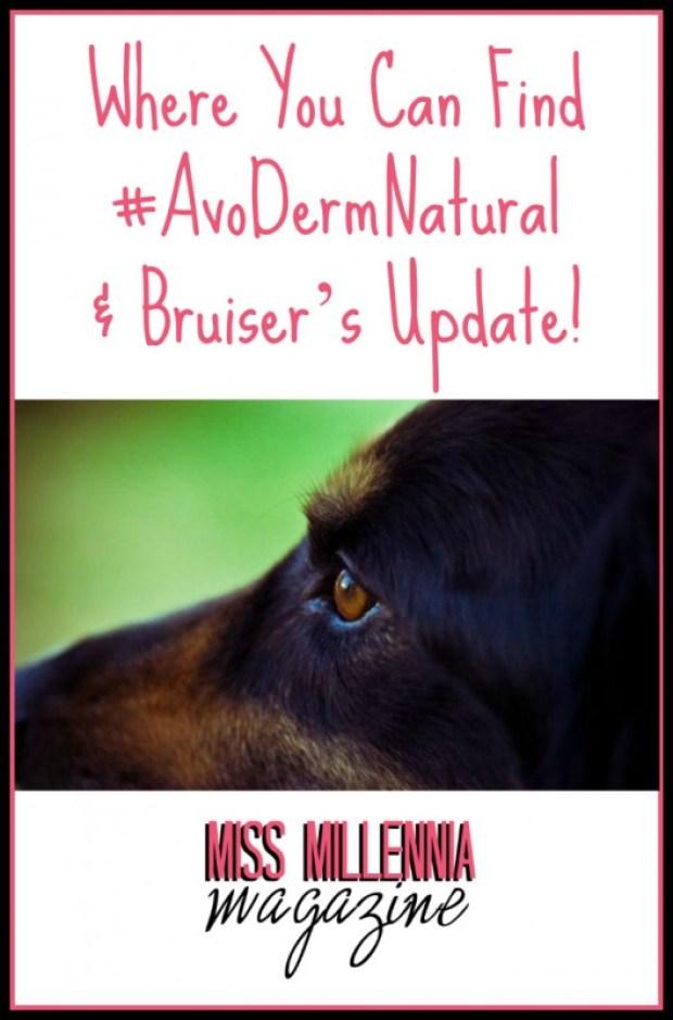 Where You Can Find #AvoDermNatural & Bruiser's Update!