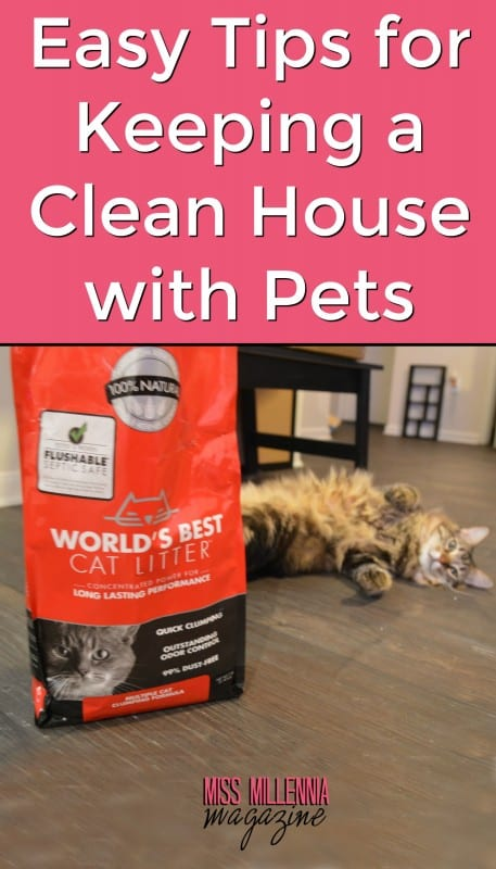 Keeping a clean house with pets have never been easier. #ad #WasteLessLitter @BestCatLitter