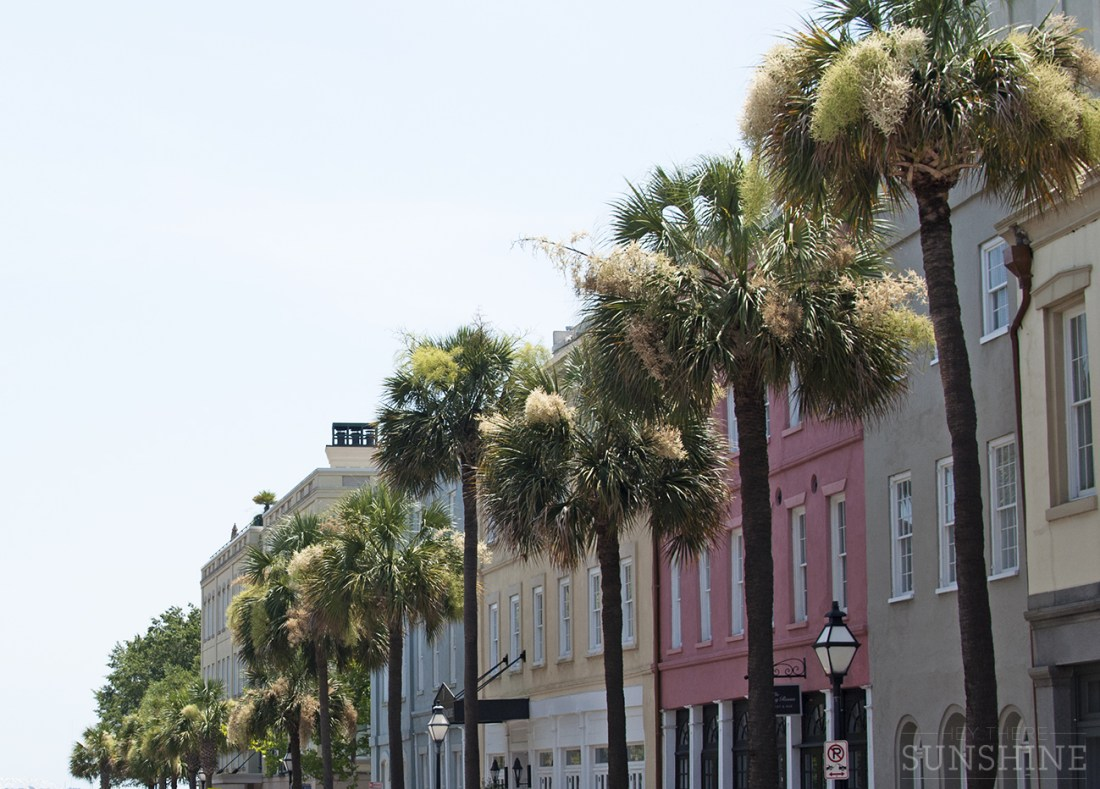 Snapshots from walking around in Charleston, SC