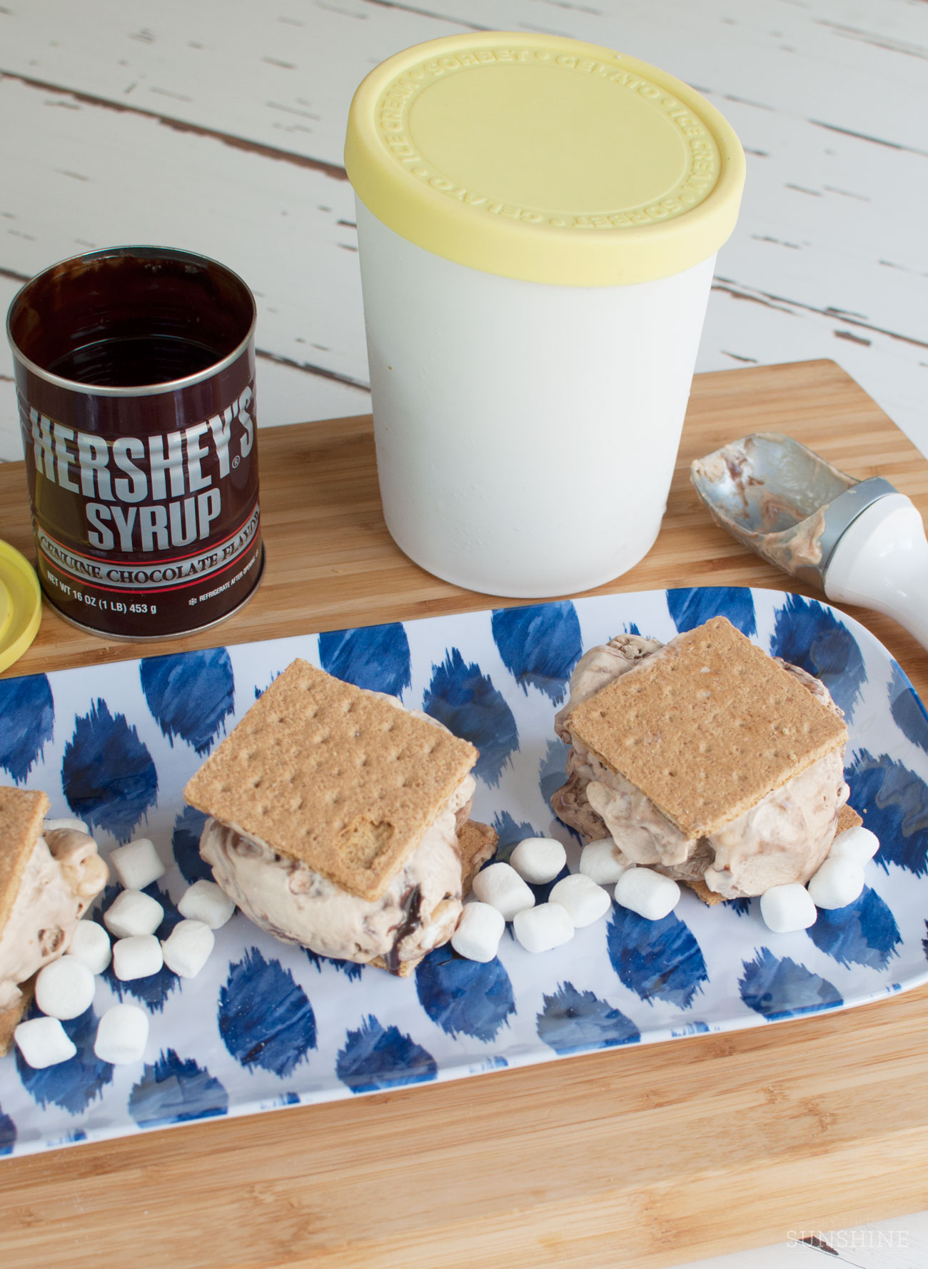 No churn espresso ice cream with marshmallows and a chocolate swirl, sandwiched between graham crackers for a delicious treat.
