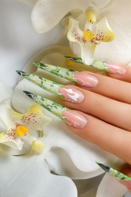 Artistic long stiletto nails design