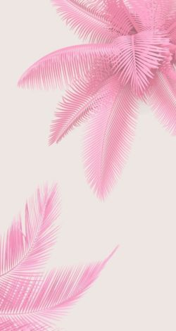 Fabulous feather palm tree effect background