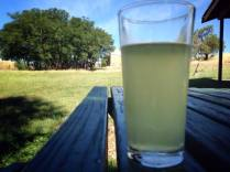 Cider at 2 Metre Tall...