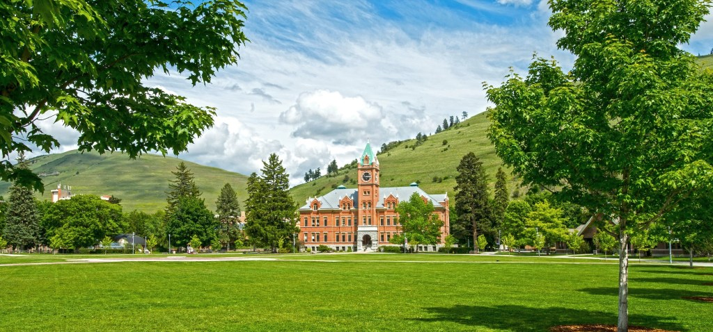 Arboretum Tour: Trees to Know in Western Montana