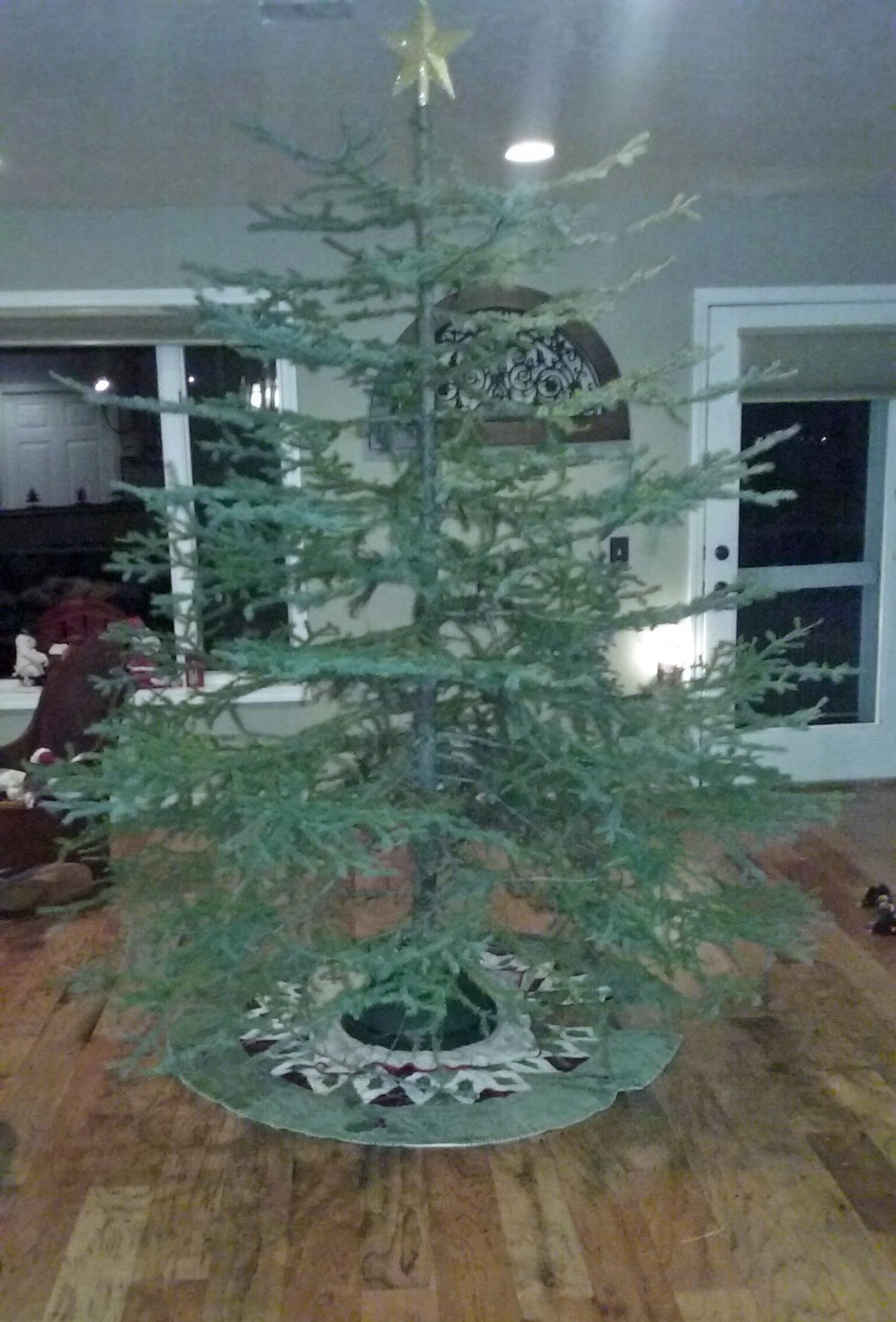 406dad - Cutting Your Own Christmas Tree