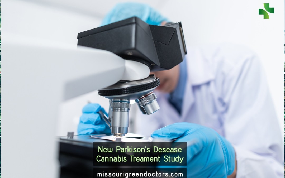 Evaluation of the neuroprotective effect of cannabinoids in a rat model of Parkinson's disease: importance of antioxidant and cannabinoid receptor-independent properties