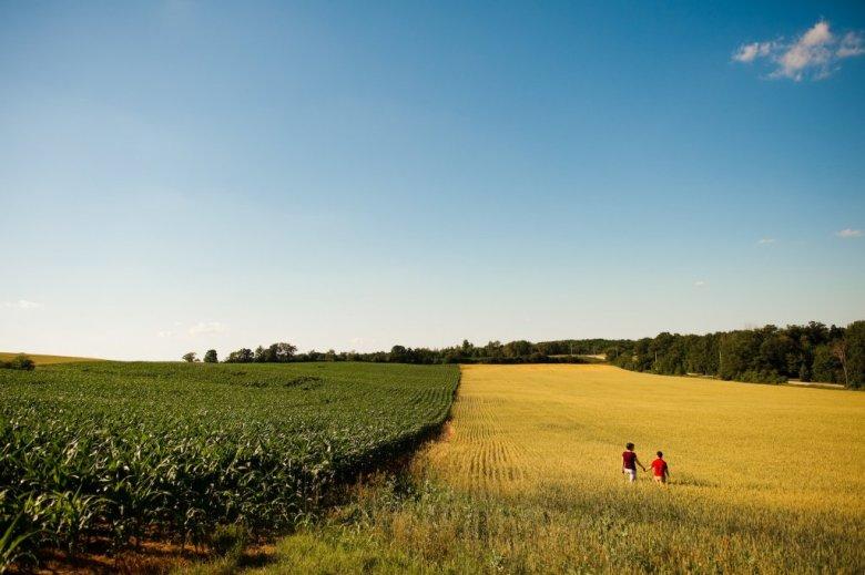 Struggle over tax break for inherited farmland churns below surface in reconciliation bill