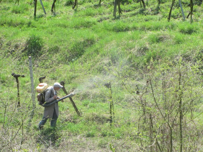 Field worker with handspray