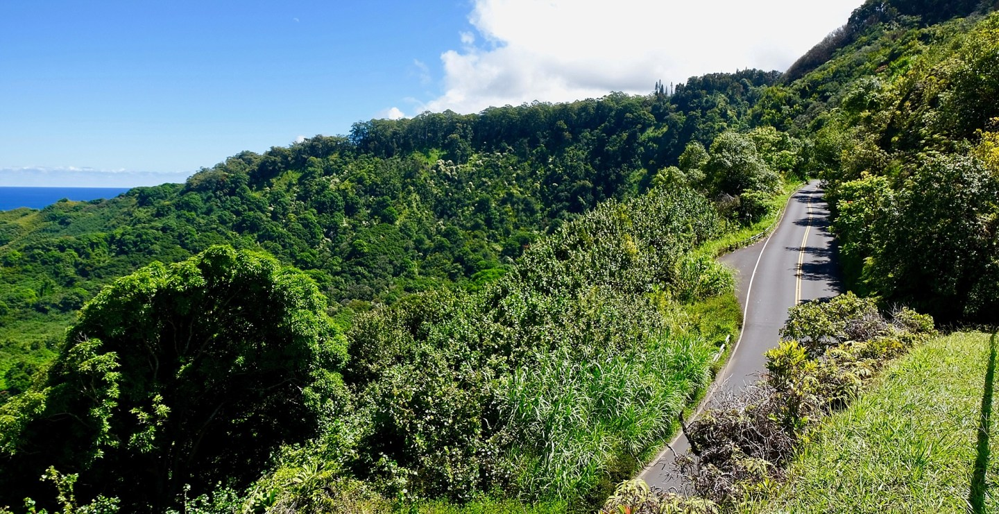 Feature Road to Hana