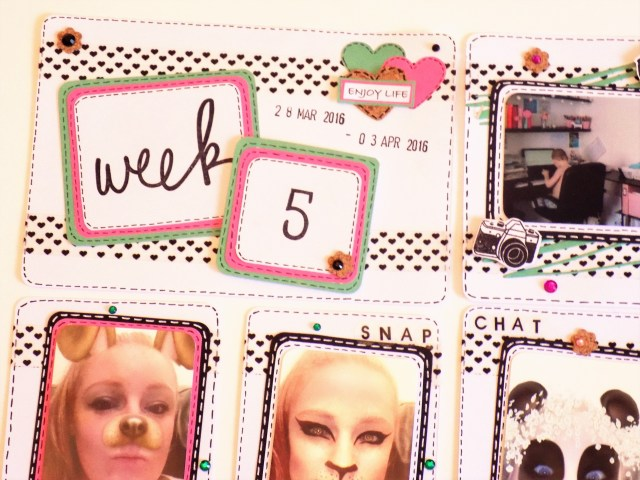 Week 5 Project Life Share 10