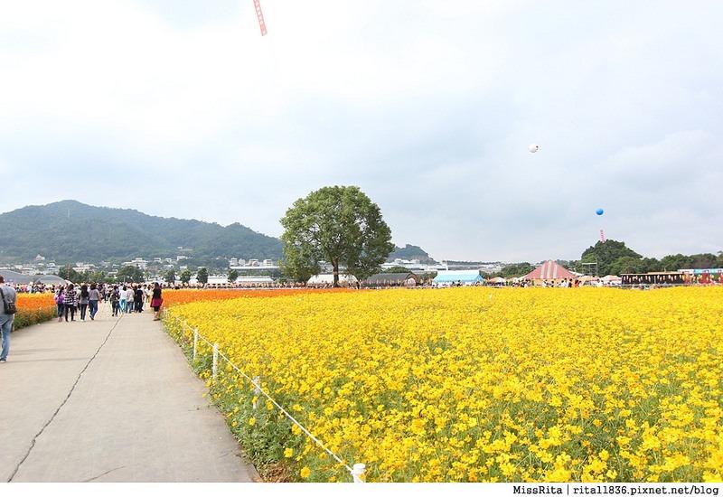 2014新社花海37