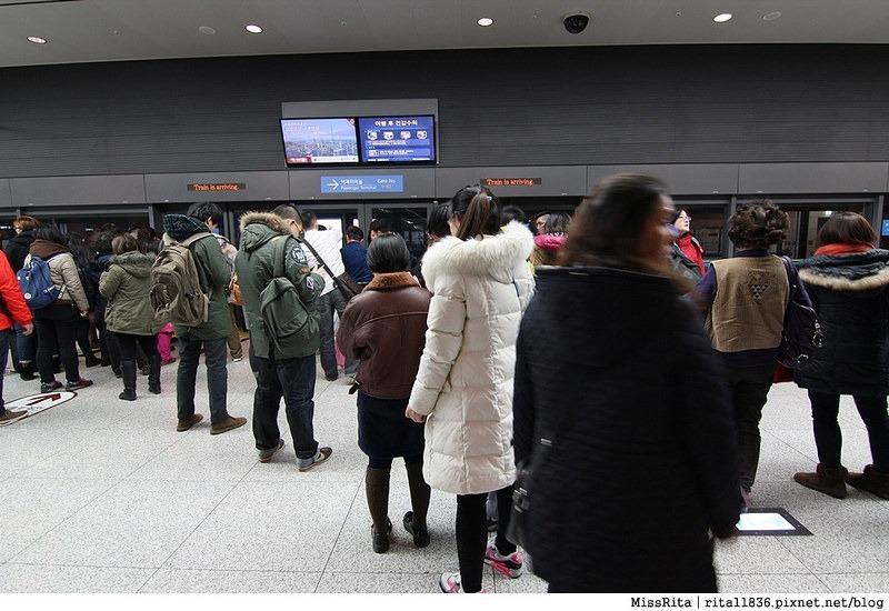 韓國 好玩 好吃 好買 旅遊推薦 首爾 南怡島 明洞 滑雪2