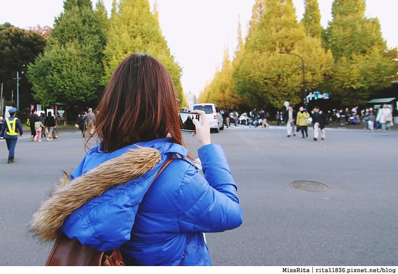 日本東京 賞銀杏 明治神宮外苑 銀杏 神宮外苑銀杏季 いちょう祭り9