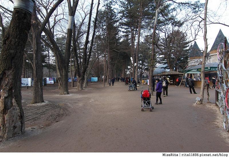 韓國 旅遊 韓國好玩 韓國 南怡島 韓劇景點 冬季戀歌場景 南怡島34