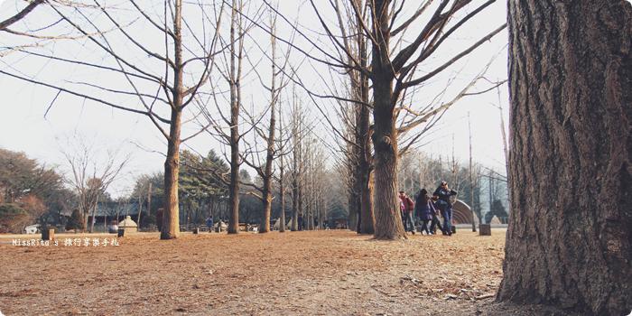 韓國 旅遊 韓國好玩 韓國 南怡島 韓劇景點 冬季戀歌場景 南怡島0-