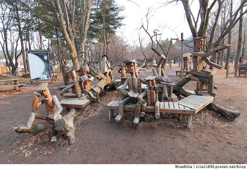 韓國 旅遊 韓國好玩 韓國 南怡島 韓劇景點 冬季戀歌場景 南怡島23