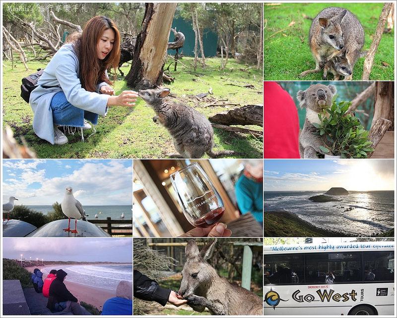 KKDAY 墨爾本自由行 melbourne gowesttours kkDAY墨爾本 墨爾本企鵝 澳洲自助 墨爾本自助 菲利浦島 菲利浦島交通 墨爾本必去 墨爾本酒莊 月光野生動物 Nobbies 墨爾本企鵝歸巢 墨爾本一日遊 菲利普島一日遊,小企鵝歸巢遊行0