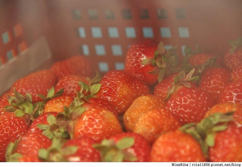 台中冰 台中美食 博館路好吃 有春冰果室 草莓冰 鳳梨冰 有春冰 平價冰店22