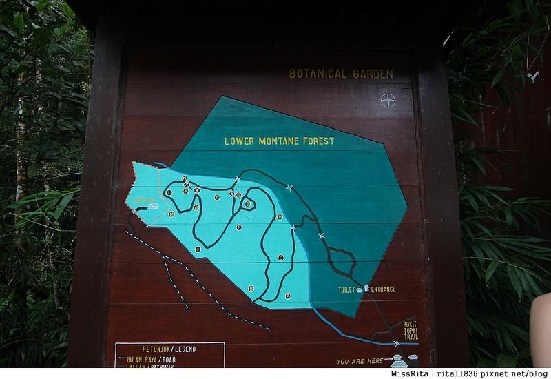 馬來西亞自由行 馬來西亞 沙巴 沙巴自由行 沙巴神山 神山公園 KinabaluPark Nabalu PORINGHOTSPRINGS 亞庇 波令溫泉 klook 客路 客路沙巴 客路自由行 客路沙巴行程12