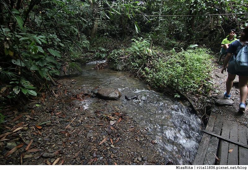 馬來西亞自由行 馬來西亞 沙巴 沙巴自由行 沙巴神山 神山公園 KinabaluPark Nabalu PORINGHOTSPRINGS 亞庇 波令溫泉 klook 客路 客路沙巴 客路自由行 客路沙巴行程39