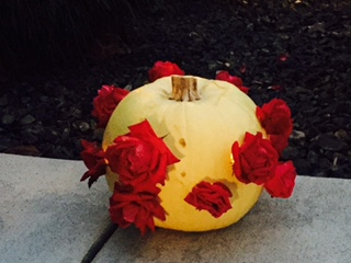 Miss Ryan's Pumpkin