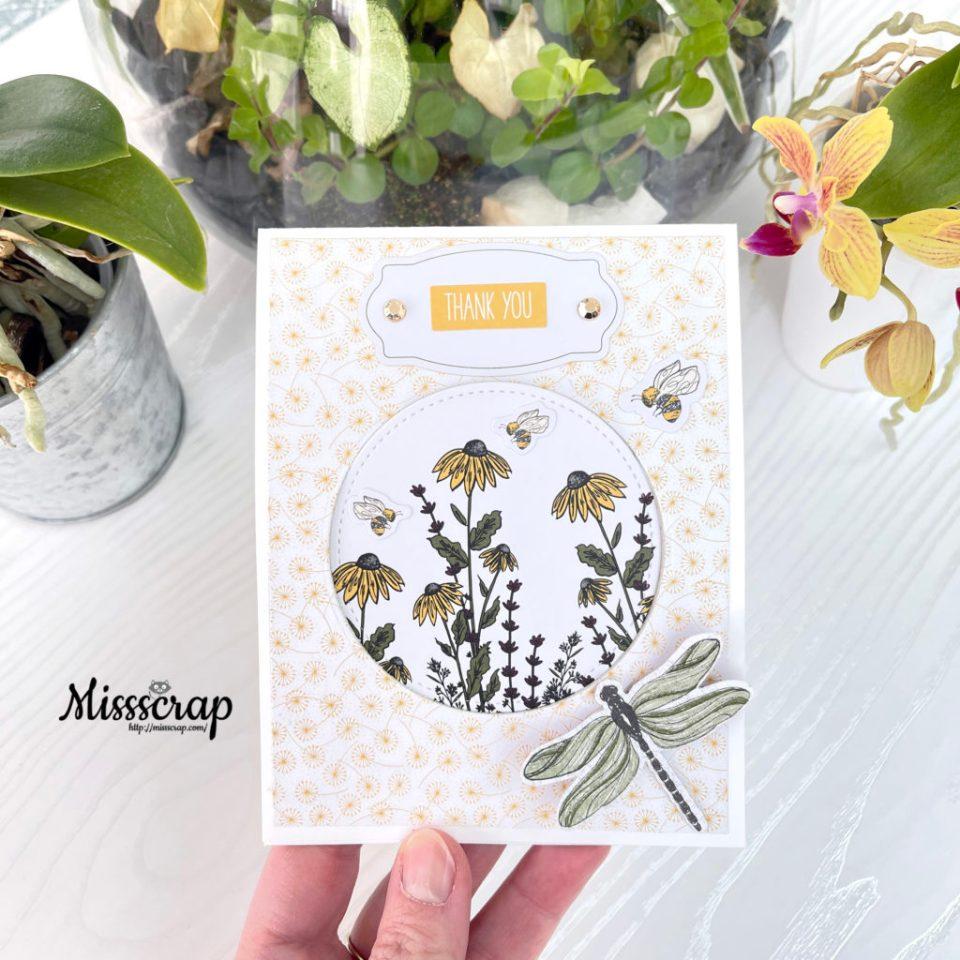pop-up papillons