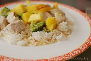 Puten Curry mit Mango & Reis