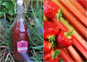 Rhabarber-Erdbeer-Sirup