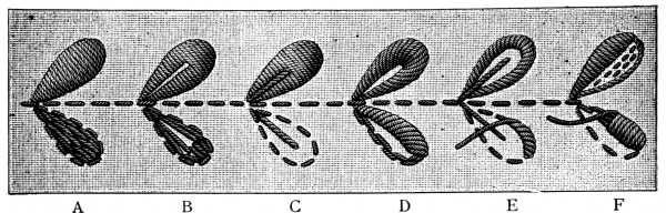 encyclopedia-of-needlework-04