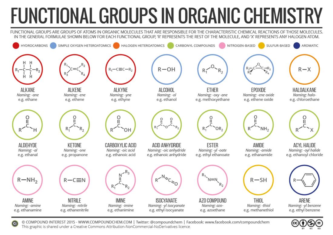 Unit 7 Organic Chemistry