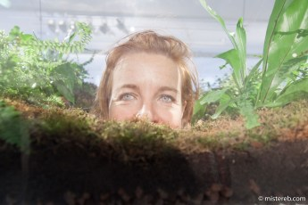 Vaughn Bell, 'Village Green'at Climats Artificiels, l'Espace de la Fondation EDF